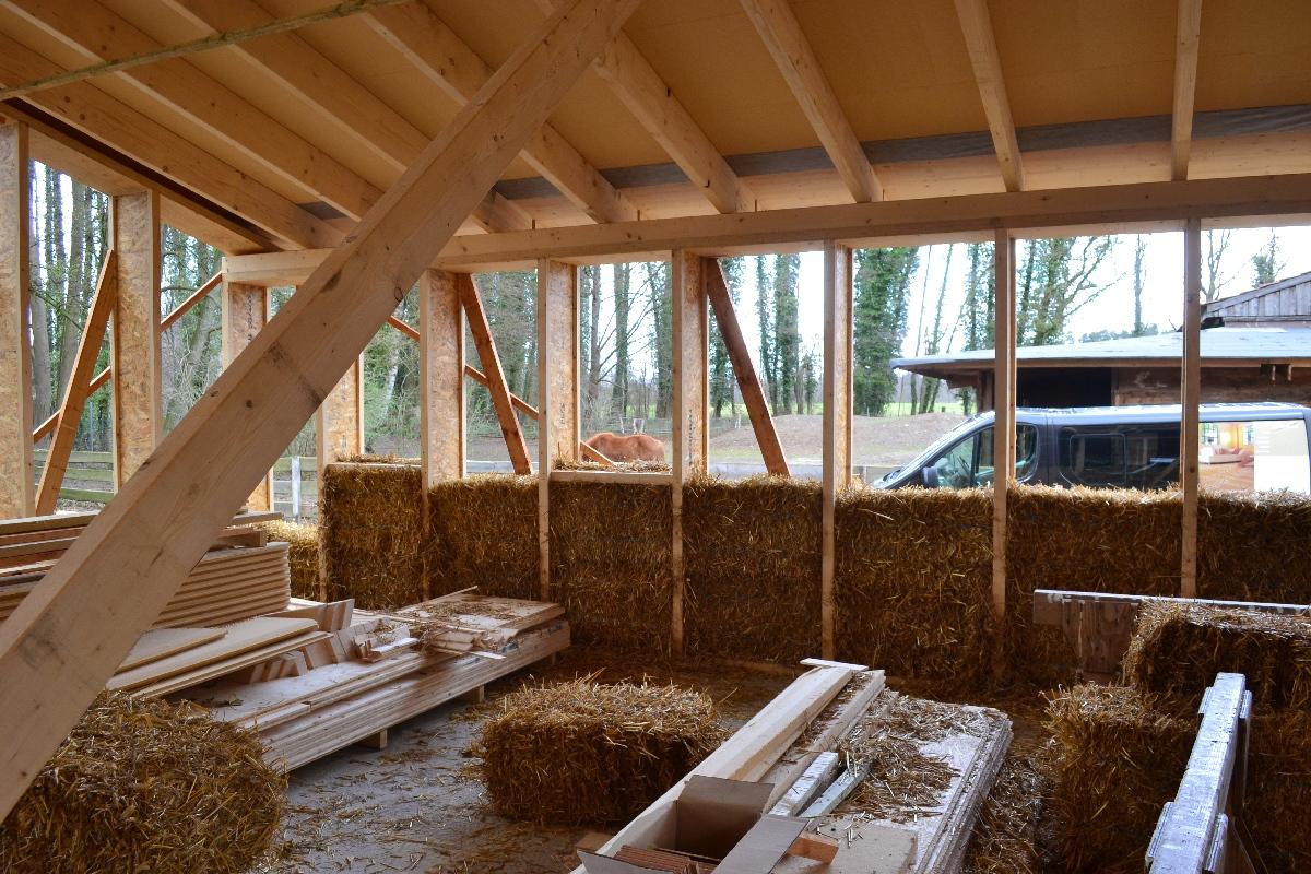 Also Wenn Ich Ein Haus Bauen Würde, Es Wäre Ein Strohballenhaus.